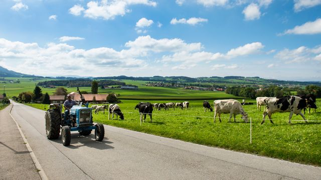 Les agriculteurs sont soumis à des pressions toujours plus grandes, constate l'Etat de Fribourg. [Jean-Christophe Bott - Keystone]
