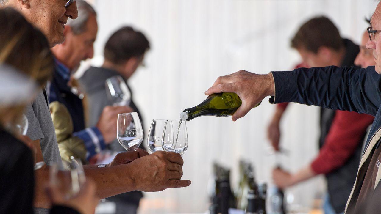 Les producteurs de vin suisses ont vécu une année contrastée.  [Martial Trezzini - Keystone]