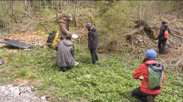 Les cours mettent aussi en avant le respect de la nature. [RTS]