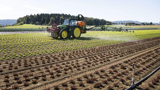 Fribourg présente un paquet de mesures pour limiter les produits phytosanitaires (image d'illustration). [Christian Beutler - Keystone]