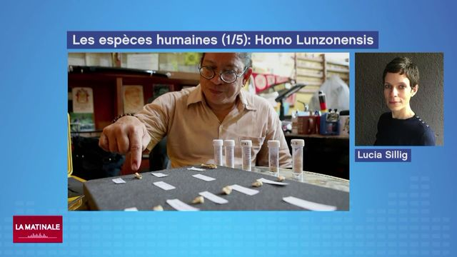 Les espèces humaines (1-5): homo luzonensis  (vidéo) [RTS]