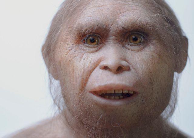Model wajah Homo floresiensis. [Kinez Riza  - Keystone/AP]