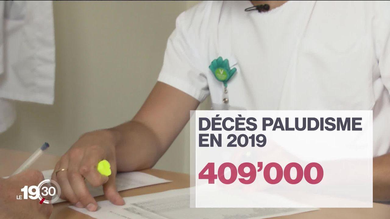 Genève fait face à une recrudescence des cas de paludisme. [RTS]
