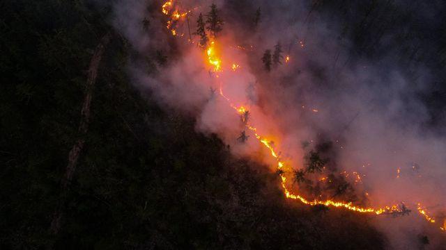 En Russie, depuis le début de l'année, dix millions d'hectares de forêt sont partis en fumée, soit une superficie légèrement inférieure à celle de l'Islande. La Yakoutie, au nord-est de la Sibérie qui est particulièrement touchée.  [NINA SLEPTSOVA - SPUTNIK VIA AFP]