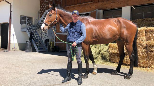 """Robin Godel s'entraîne au quotidien à l'Institut Equestre National d'Avenches avec """"Jet Set"""". [Sébastien Schorderet - RTS]"""