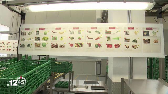 Plusieurs associations romandes unissent leurs forces contre le gaspillage alimentaire. Lancement d'une plateforme à Penthalaz (VD) [RTS]