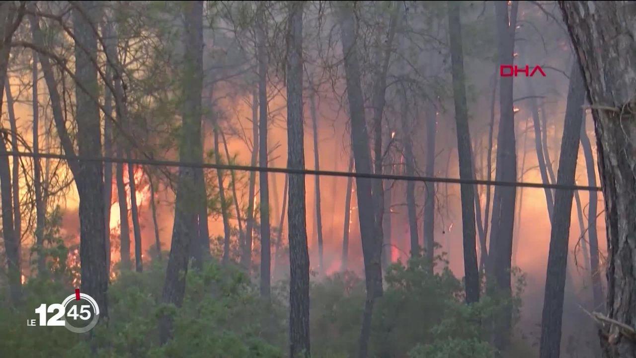 Dans le sud de la Turquie, les pompiers continuent de lutter contre les feux de forêt qui ont déjà fait 6 morts [RTS]