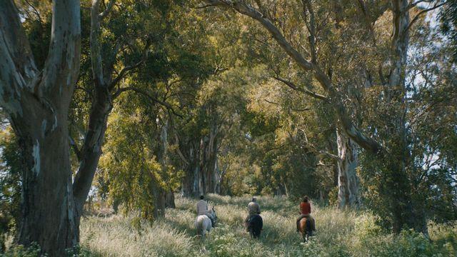 Azor, un film d'Andreas Fontana. [Alina Film - RTS]