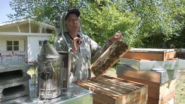 L'apiculture plus qu'un métier, une mission pour Stéphanie Vuadens, l'une des rares apicultrices professionnelles du pays [RTS]
