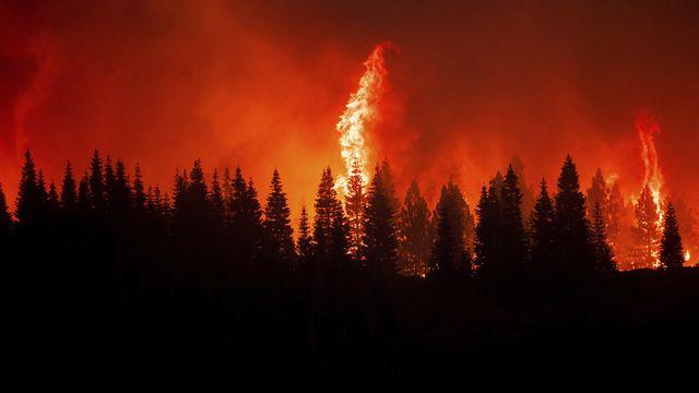 Les incendies font rage en Californie. [Noah Berger - Keystone/AP]