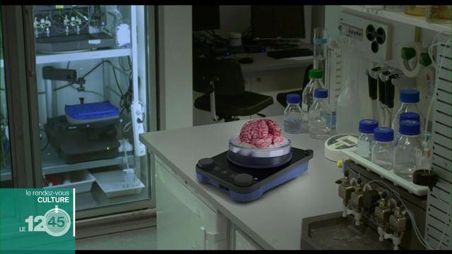 """Plongée dans le cerveau humain et l'intelligence artificielle dans le film """"Cinq nouvelles du cerveau"""" [RTS]"""