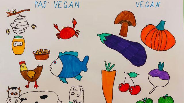 Végétarien.ne / Vegan. [Maïwenn]
