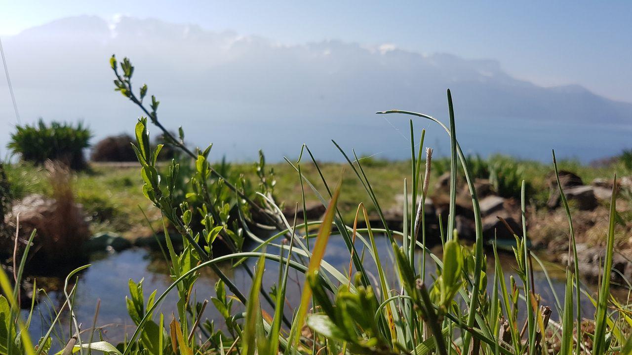 Le congrès mondial sur la biodiversité a débuté à Marseille. (image d'illustration) [DR]