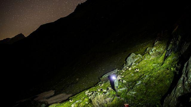 Trois jeunes loups de la meute de Beverin (GR) pourront être abattus, a annoncé lundi la Confédération. Les cantons de Vaud et du Valais ont, eux, reçu le feu vert, pour des tirs de régulation du loup la semaine dernière. Pour protéger les troupeaux et éviter les tirs, des bénévoles de l'Organisation pour la protection des alpages suisses (OPAL) se sont relayés tout l'été sur trois alpages valaisans.  [JEAN-CHRISTOPHE BOTT - KEYSTONE]