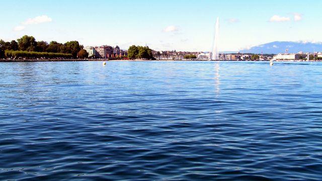 Le site du Plonjon, à Genève, avec le quai Gustave-Ador sur sa gauche. Il est localisé entre le débarcadère des Eaux-Vives, en arrière-plan, et le Port-Noir. 441 sites palafittiques ont été dénombrés en Suisse, un record dans les pays de l'Arc alpin. [Romano1246 - Wikipédia]