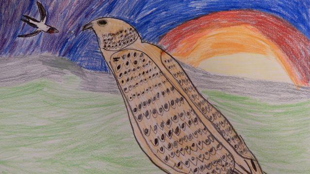 Oiseaux. [Romain - RTS]