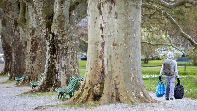 Un homme sans-abri traverse le jardin botanique à Genève. [Salvatore Di Nolfi - KEYSTONE]