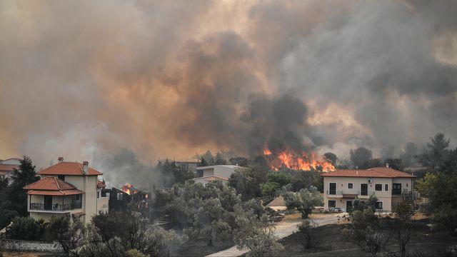 La forêt brûle autour du village d'Afidnes, en Grèce, au mois d'août 2021. [LOUISA GOULIAMAKI  - AFP]