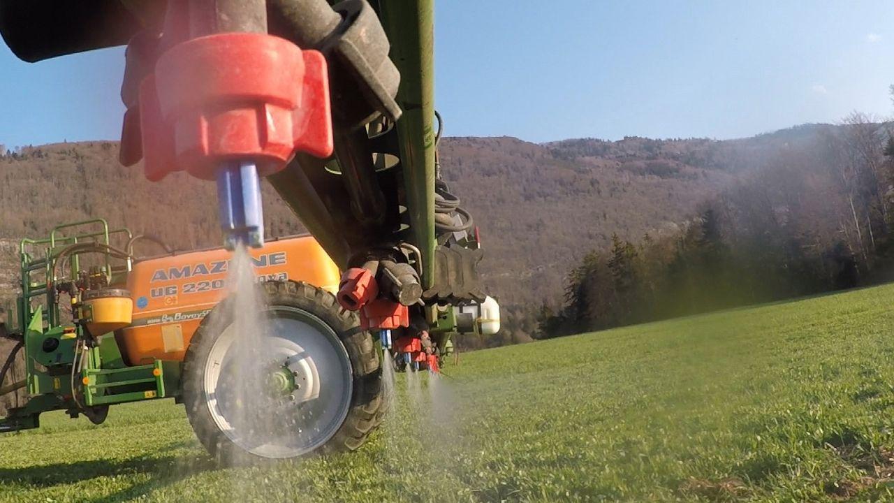 Temps présent - Pesticides, à quand la fin du carnage? [RTS]