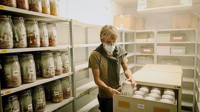Préservation du vivant (3/5): une banque de semences pour conserver les espèces menacées. [©Laurent Guiraud]