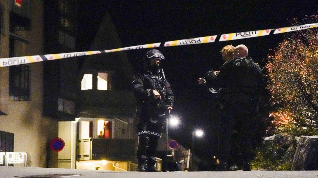 Un homme muni d'un arc et de flèches a tué plusieurs personnes en Norvège. [Håkon Mosvold Larsen  - AFP]