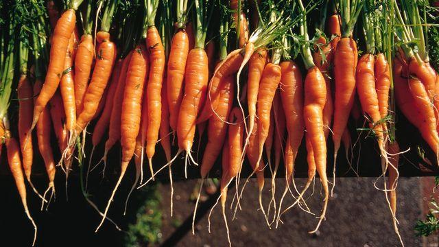 Les producteurs appellent à acheter les fruits et légumes moins jolis. [Christof Schuerpf - Keystone]