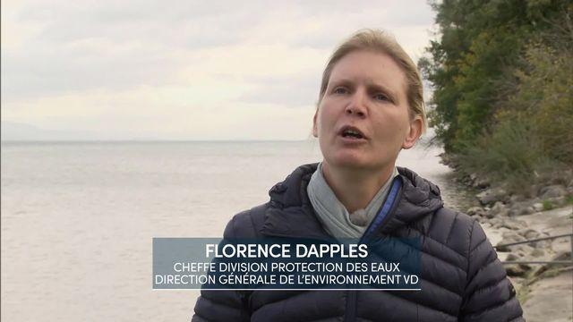 Entretien avec Florence Dapples, cheffe de la division Protection des eaux, Direction générale de l'environnement [RTS]